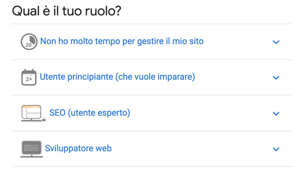 Google Search Console_ruoli